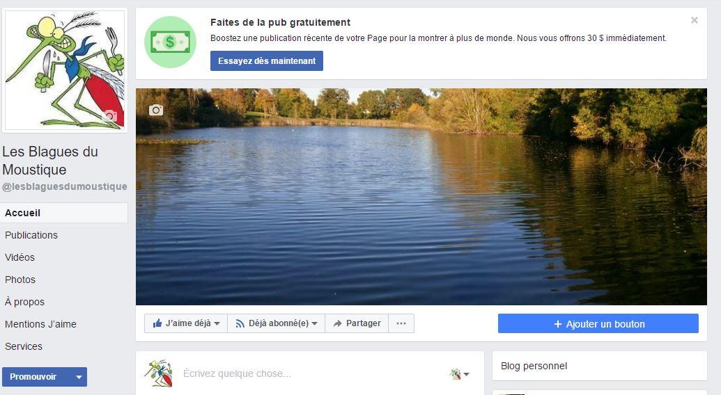 LesblaguesduMoustique_page facebook